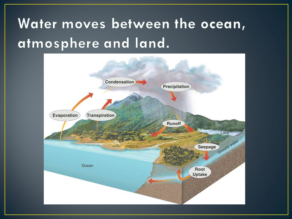 Water moves between the ocean, atmosphere and land.