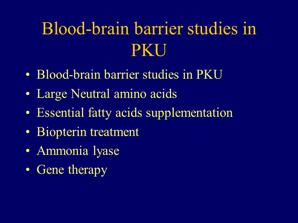 Blood-brain barrier studies in PKU