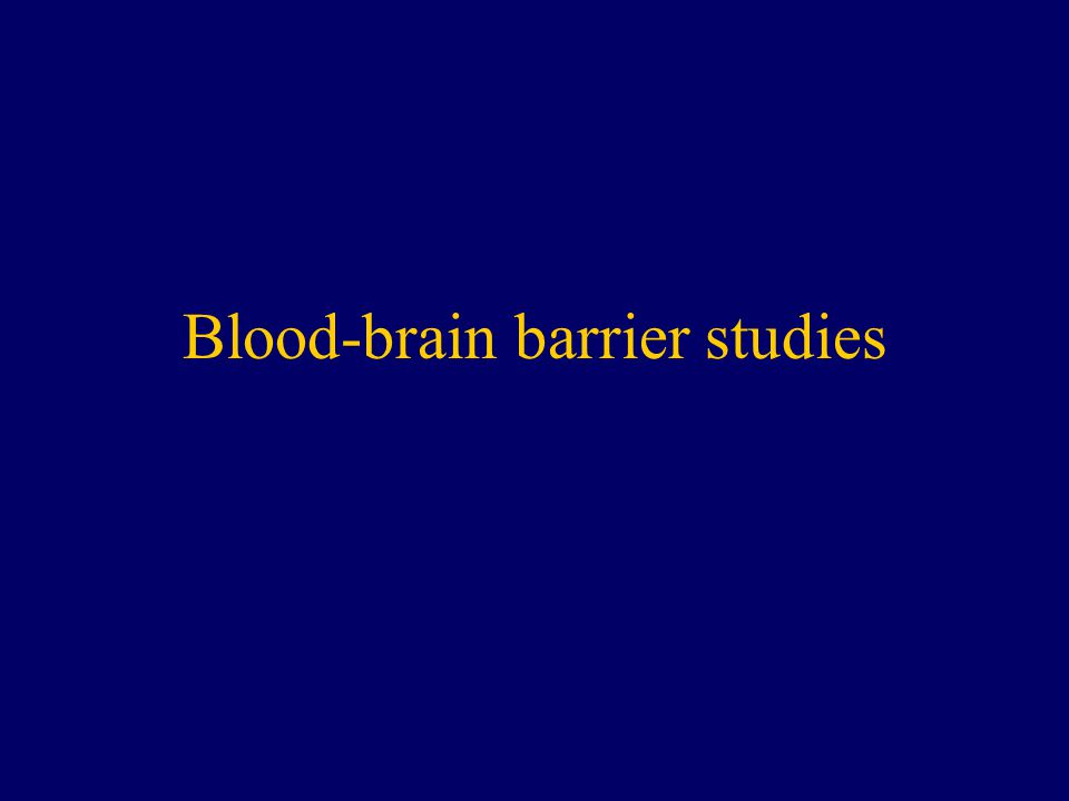 Blood-brain barrier studies