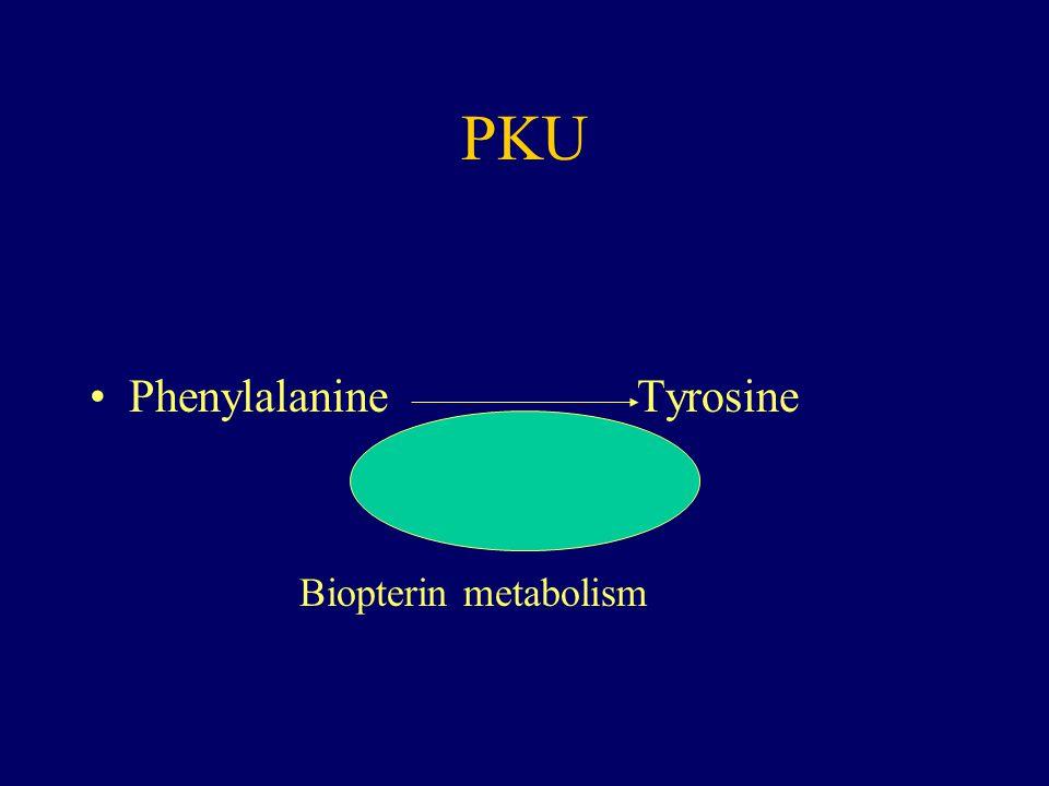 PKU Phenylalanine Tyrosine Biopterin metabolism