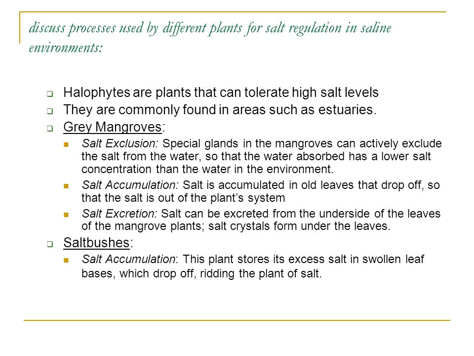 discuss processes used by different plants for salt regulation in saline environments: