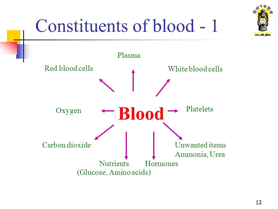 Constituents of blood - 1