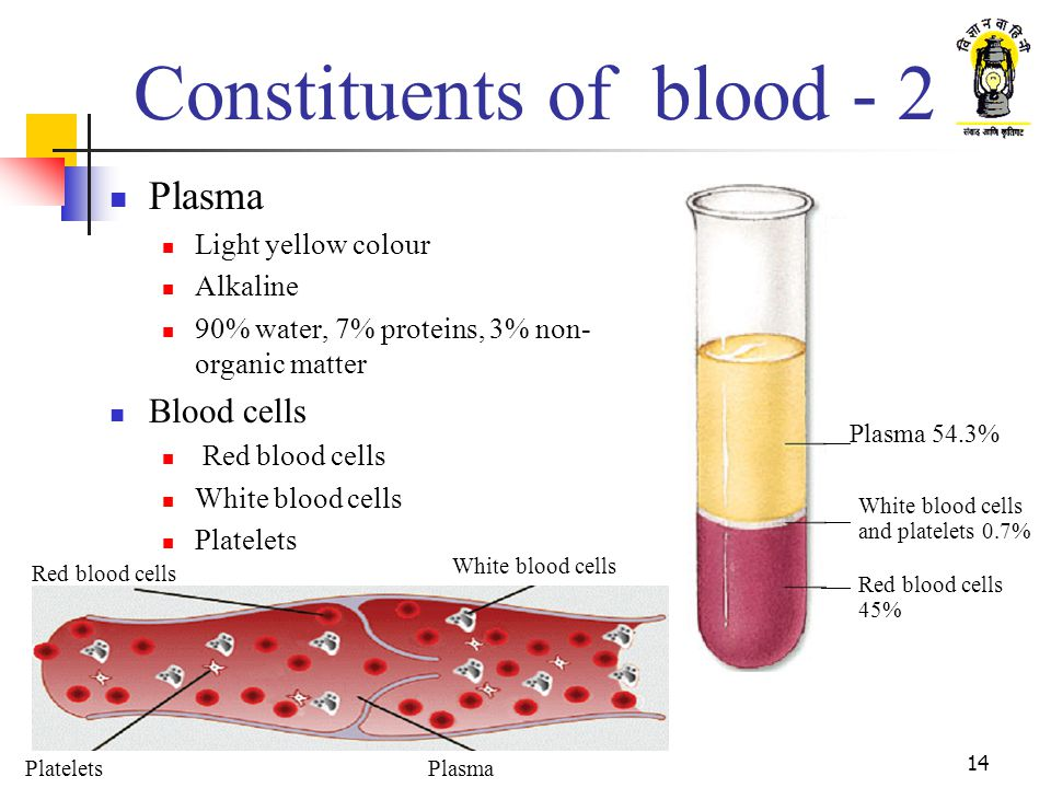 Constituents of blood - 2