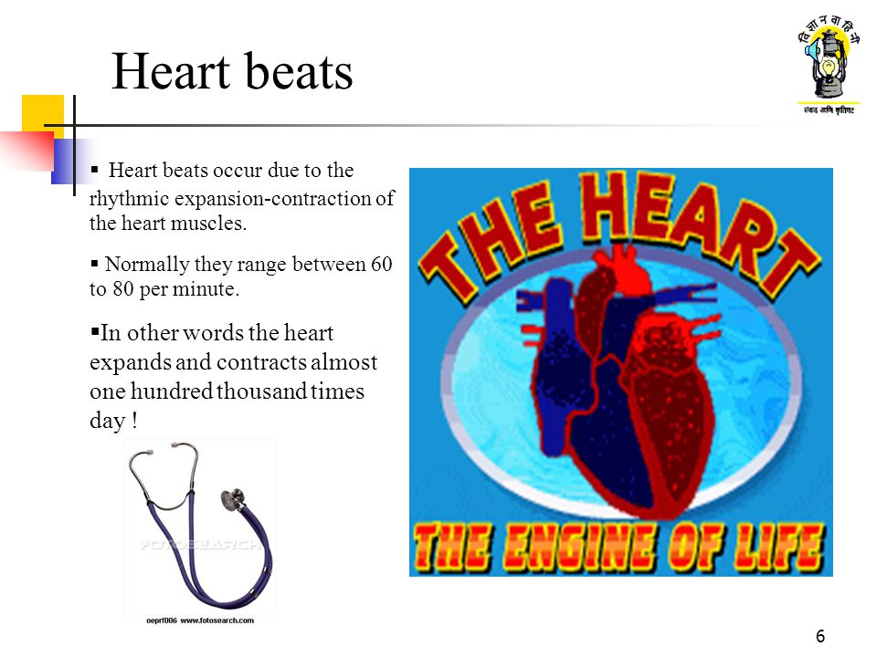 Heart beats Heart beats occur due to the rhythmic expansion-contraction of the heart muscles. Normally they range between 60 to 80 per minute.