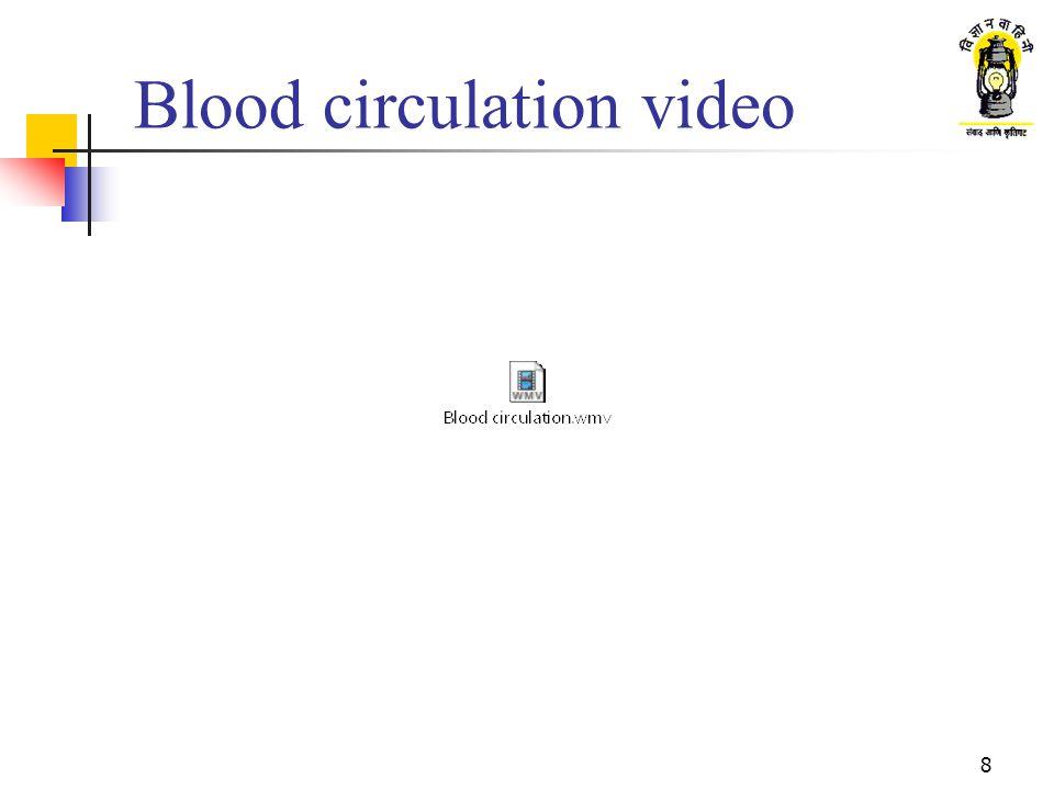 Blood circulation video