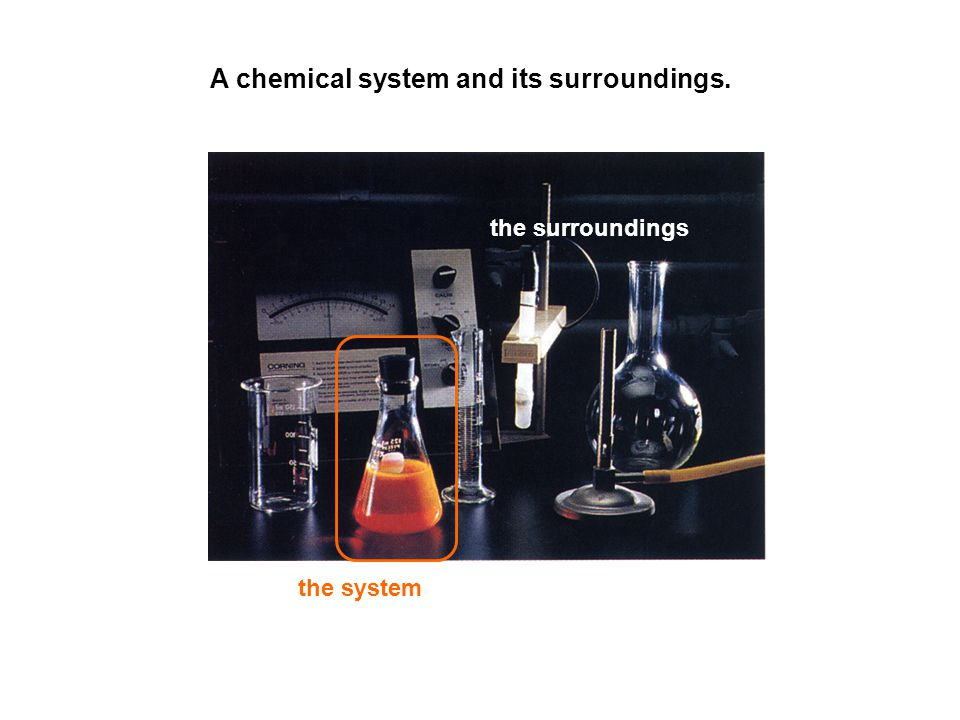 A chemical system and its surroundings.