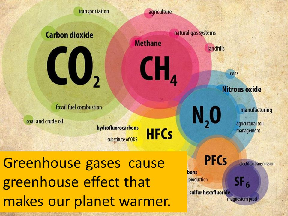 Greenhouse gases cause greenhouse effect that makes our planet warmer.