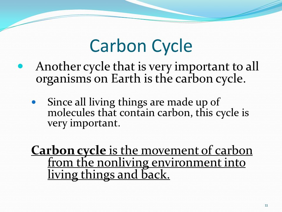 Carbon Cycle Another cycle that is very important to all organisms on Earth is the carbon cycle.