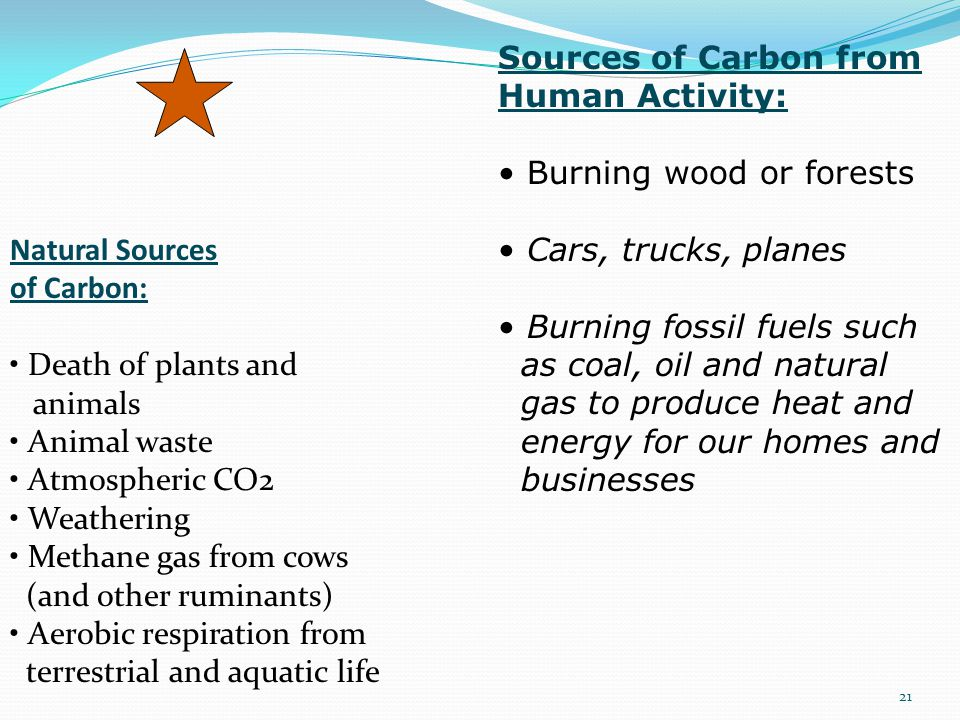 Sources of Carbon from Human Activity: • Burning wood or forests. • Cars, trucks, planes. • Burning fossil fuels such.