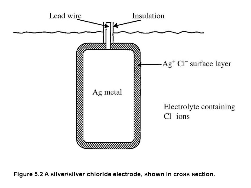 fig_05_02 Figure 5.2 A silver/silver chloride electrode, shown in cross section.
