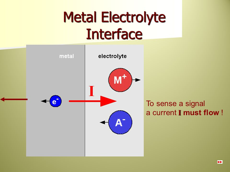 Metal Electrolyte Interface
