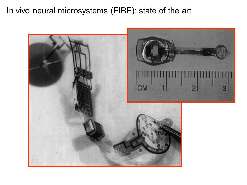 In vivo neural microsystems (FIBE): state of the art