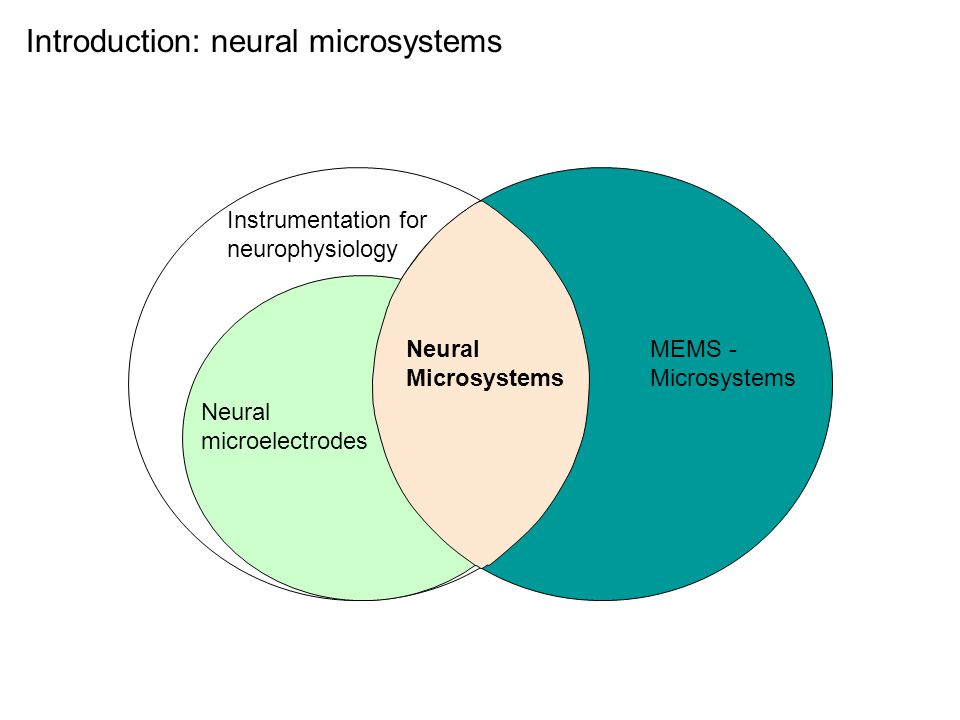 Introduction: neural microsystems