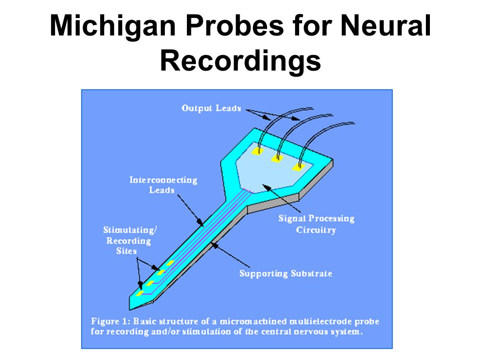 Michigan Probes for Neural Recordings