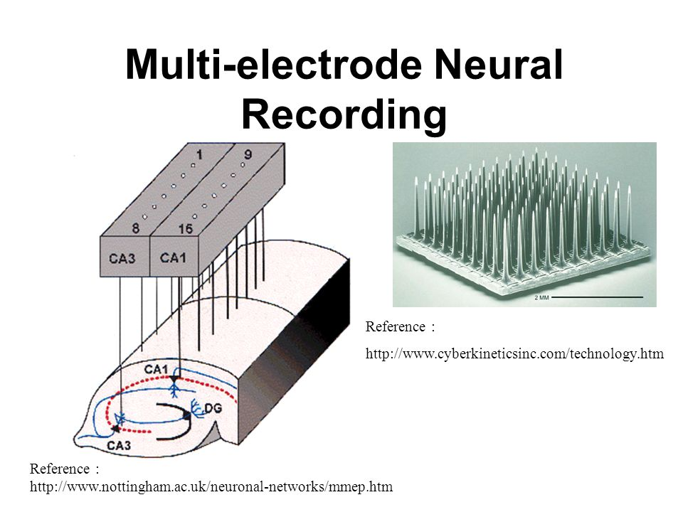 Multi-electrode Neural Recording