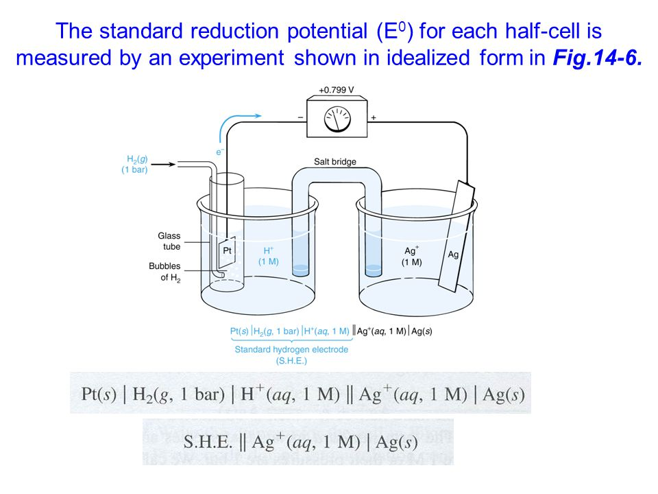 The standard reduction potential (E0) for each half-cell is measured by an experiment shown in idealized form in Fig.14-6.