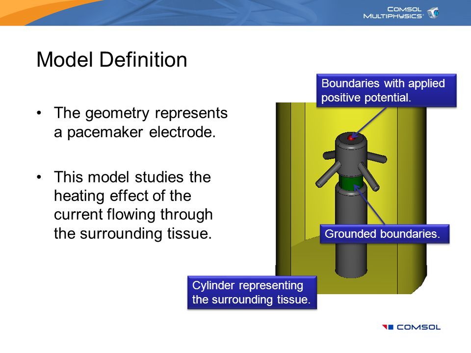 Model Definition The geometry represents a pacemaker electrode.