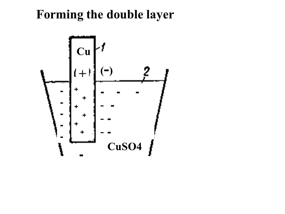 Forming the double layer