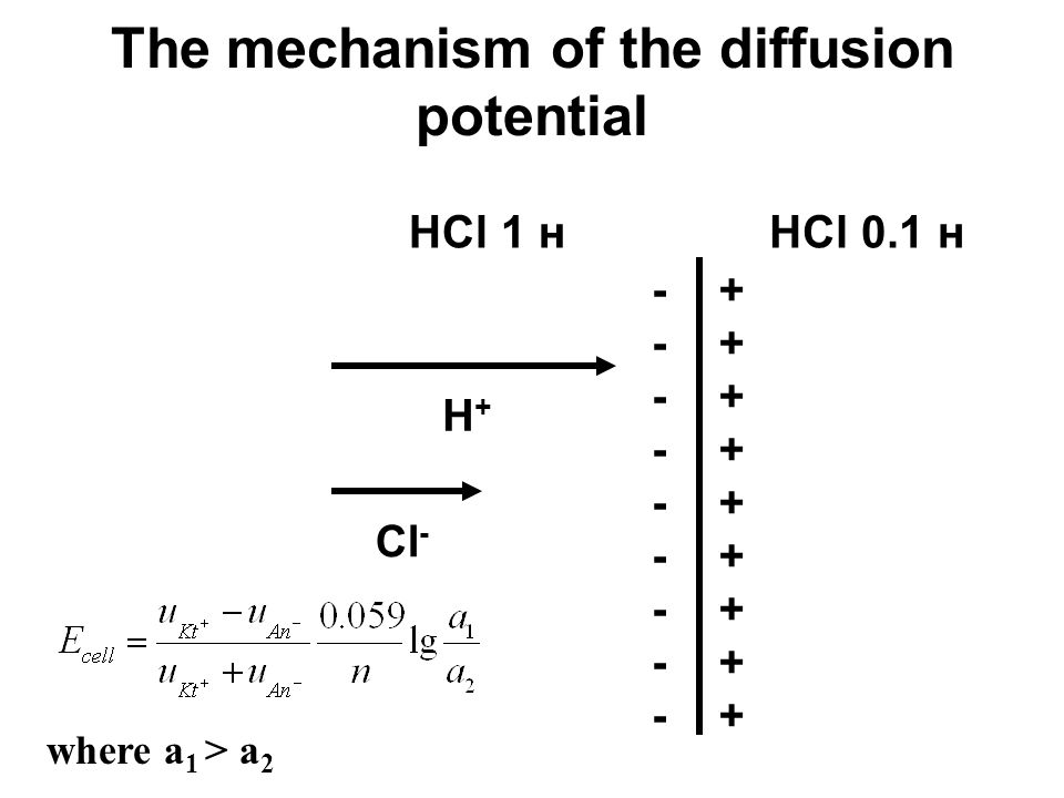 The mechanism of the diffusion potential