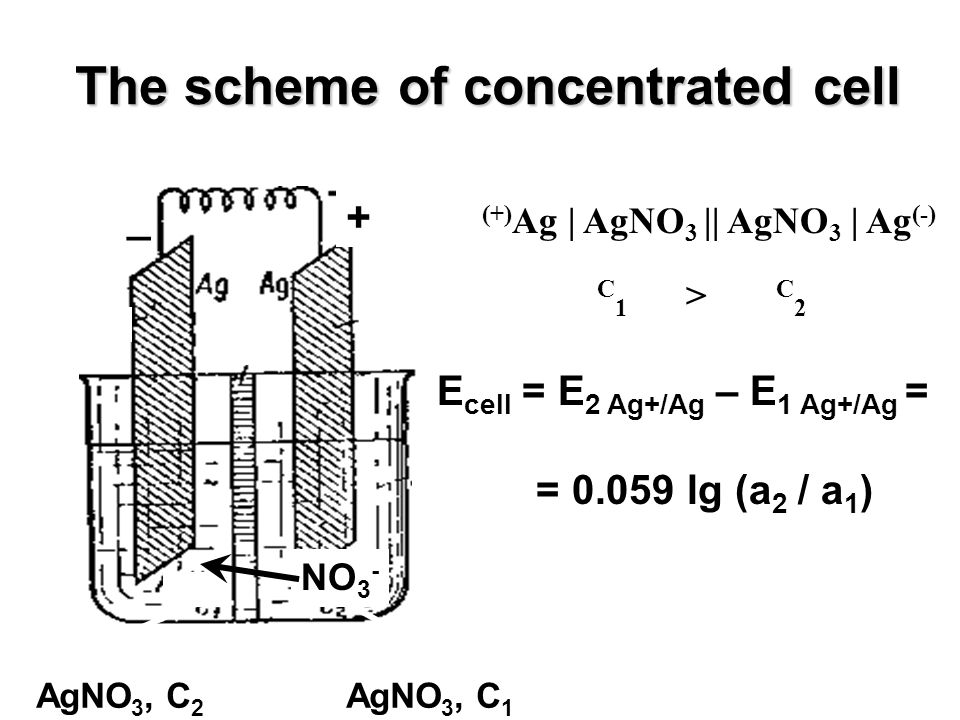 The scheme of concentrated cell