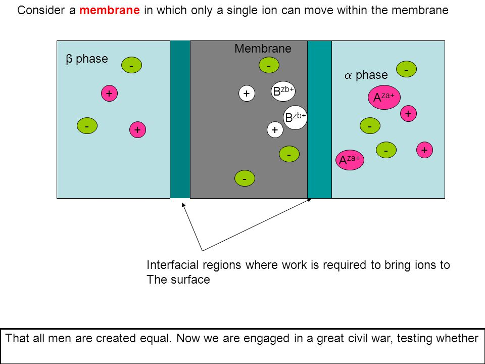 Consider a membrane in which only a single ion can move within the membrane