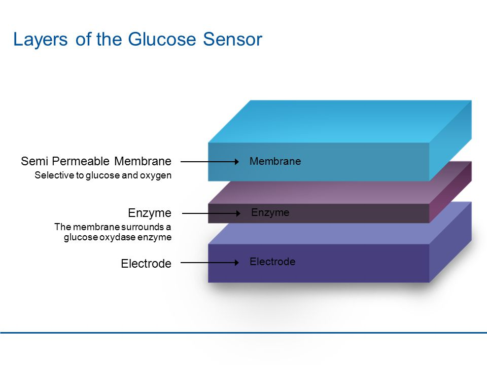Layers of the Glucose Sensor