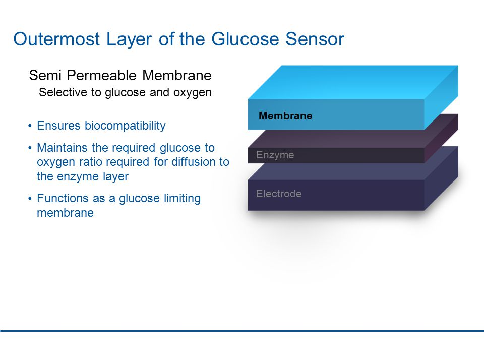Outermost Layer of the Glucose Sensor