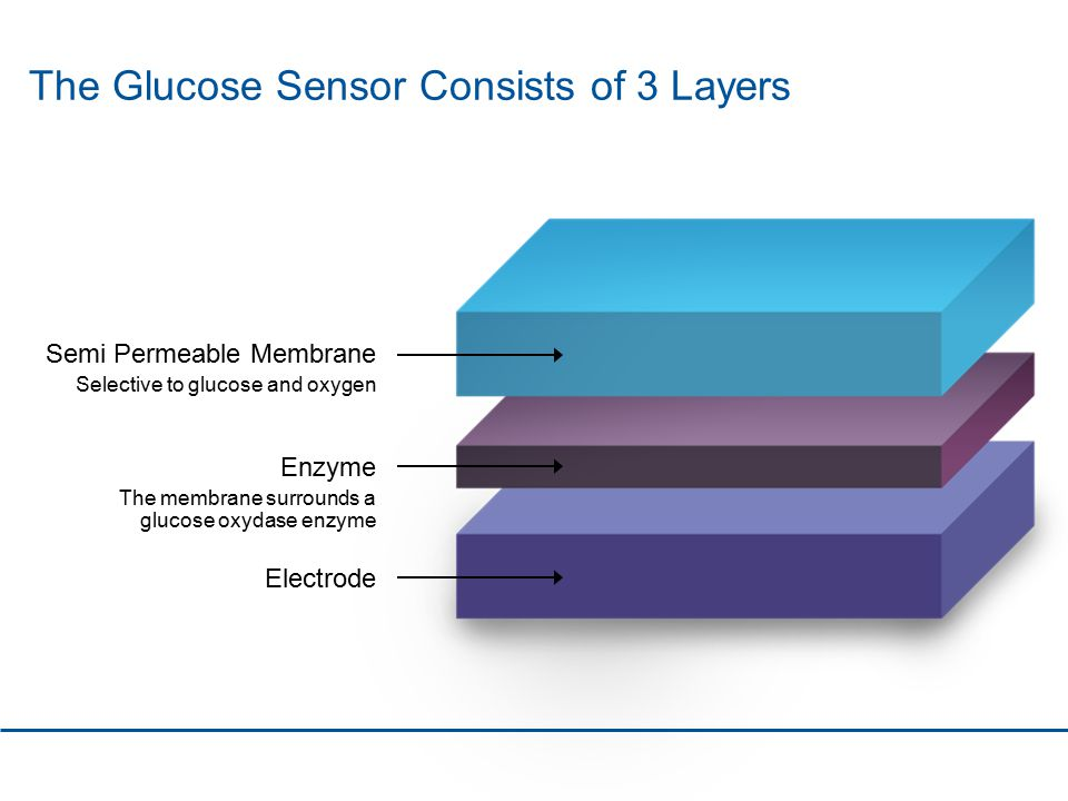 The Glucose Sensor Consists of 3 Layers