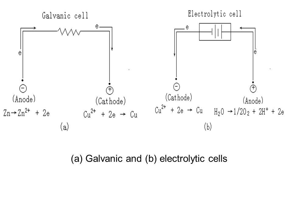 (a) Galvanic and (b) electrolytic cells