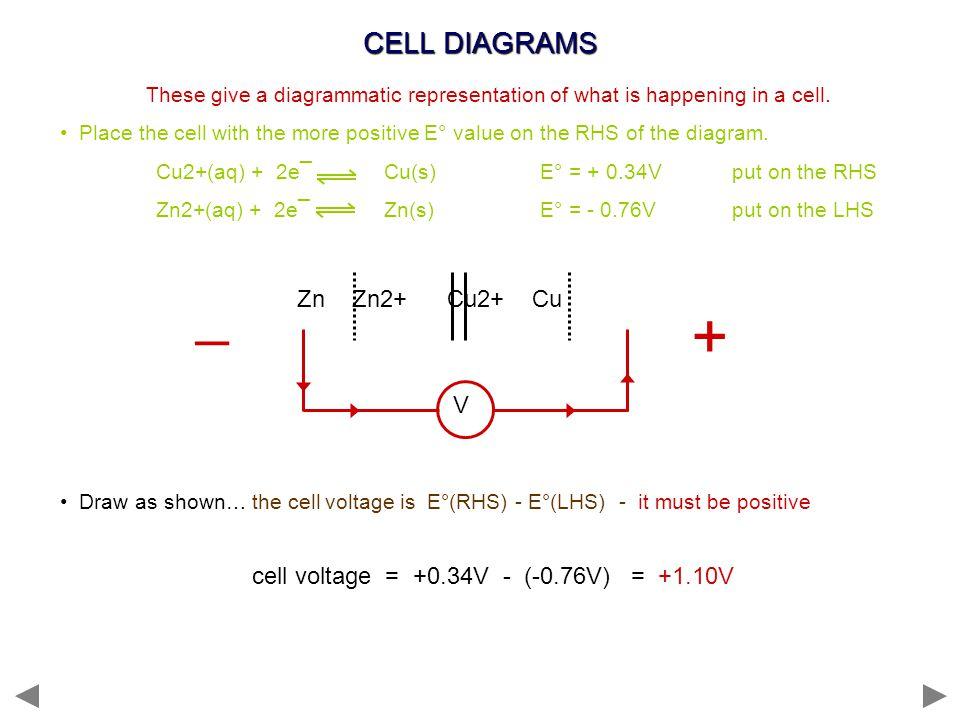 + _ CELL DIAGRAMS Zn Zn2+ Cu2+ Cu V