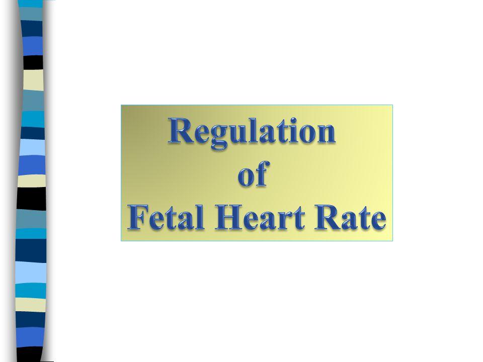 Regulation of Fetal Heart Rate