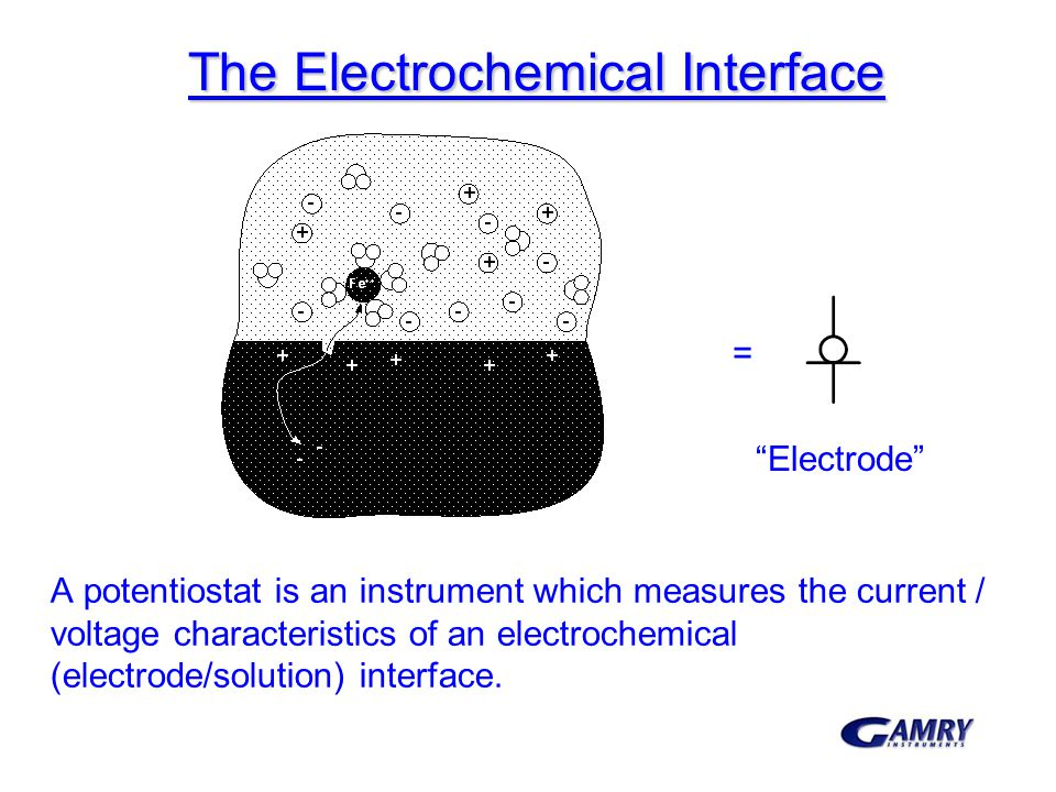 The Electrochemical Interface