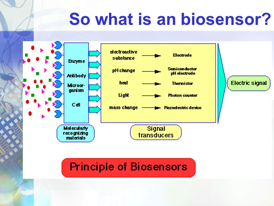 So what is an biosensor