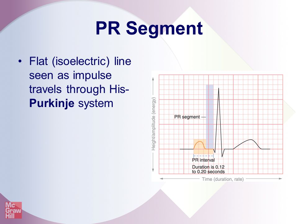 PR Segment Flat (isoelectric) line seen as impulse travels through His-Purkinje system
