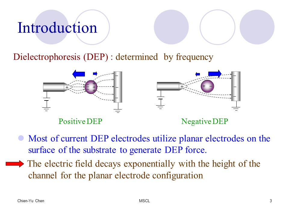 Introduction Dielectrophoresis (DEP) : determined by frequency