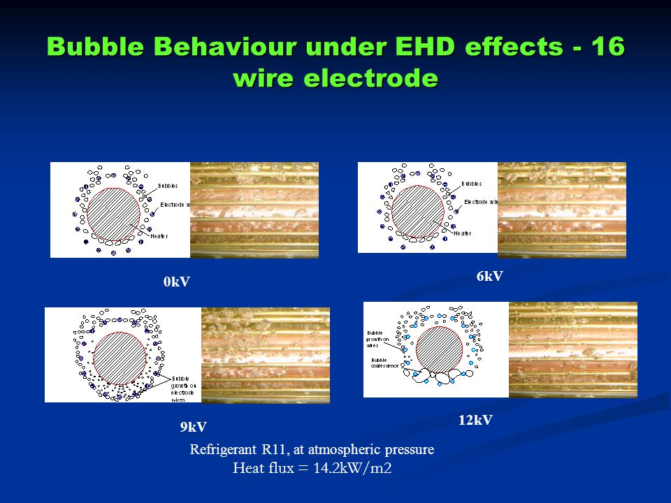 Bubble Behaviour under EHD effects - 16 wire electrode