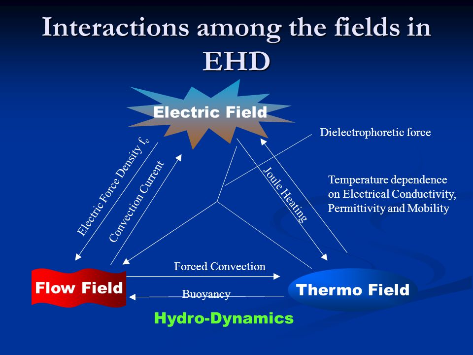 Interactions among the fields in EHD