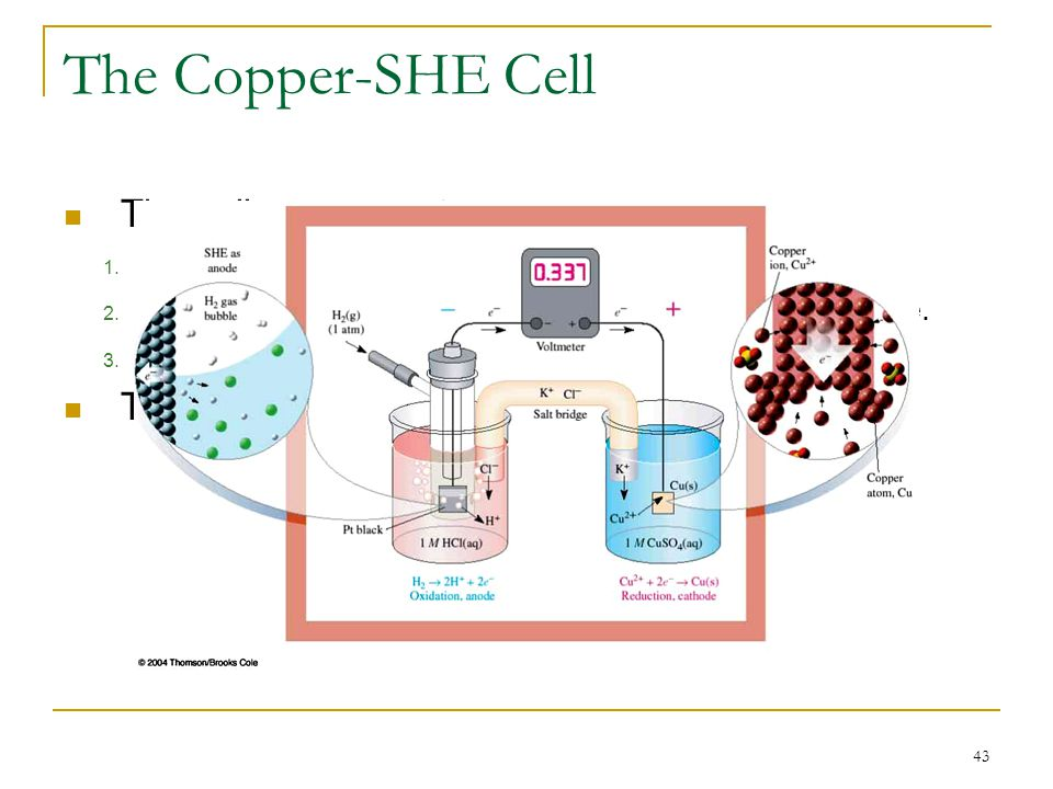 The Copper-SHE Cell The cell components are: