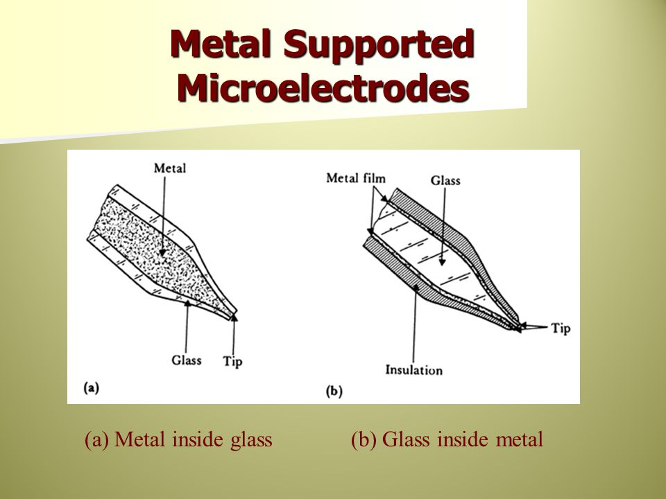 Metal Supported Microelectrodes