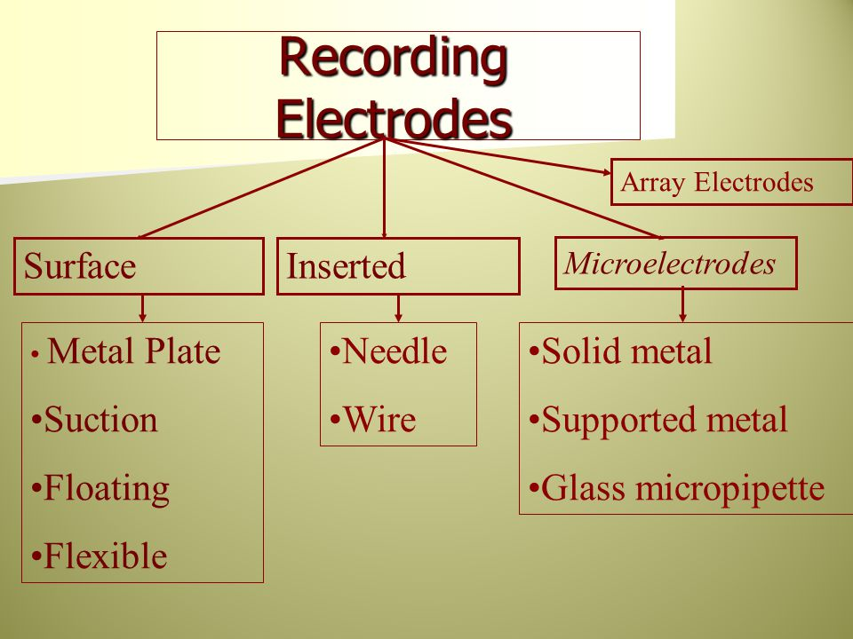 Recording Electrodes Surface Inserted Solid metal Supported metal