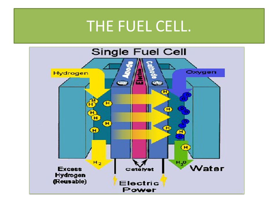 THE FUEL CELL.