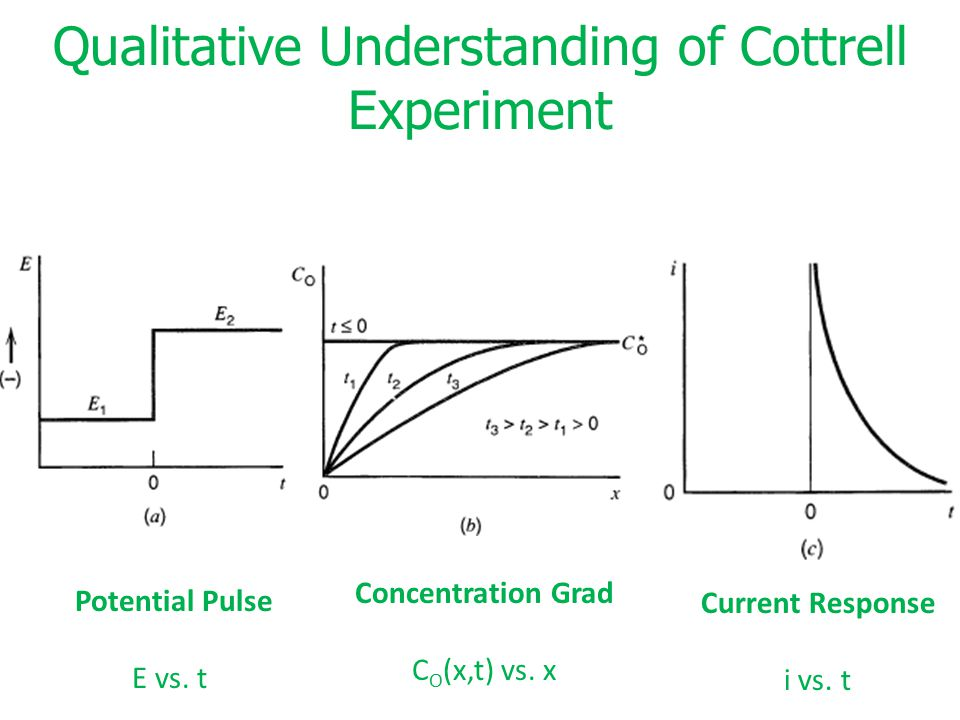 Qualitative Understanding of Cottrell Experiment