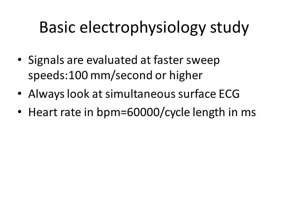 Basic electrophysiology study