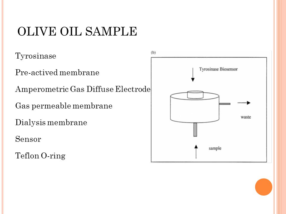OLIVE OIL SAMPLE Tyrosinase Pre-actived membrane