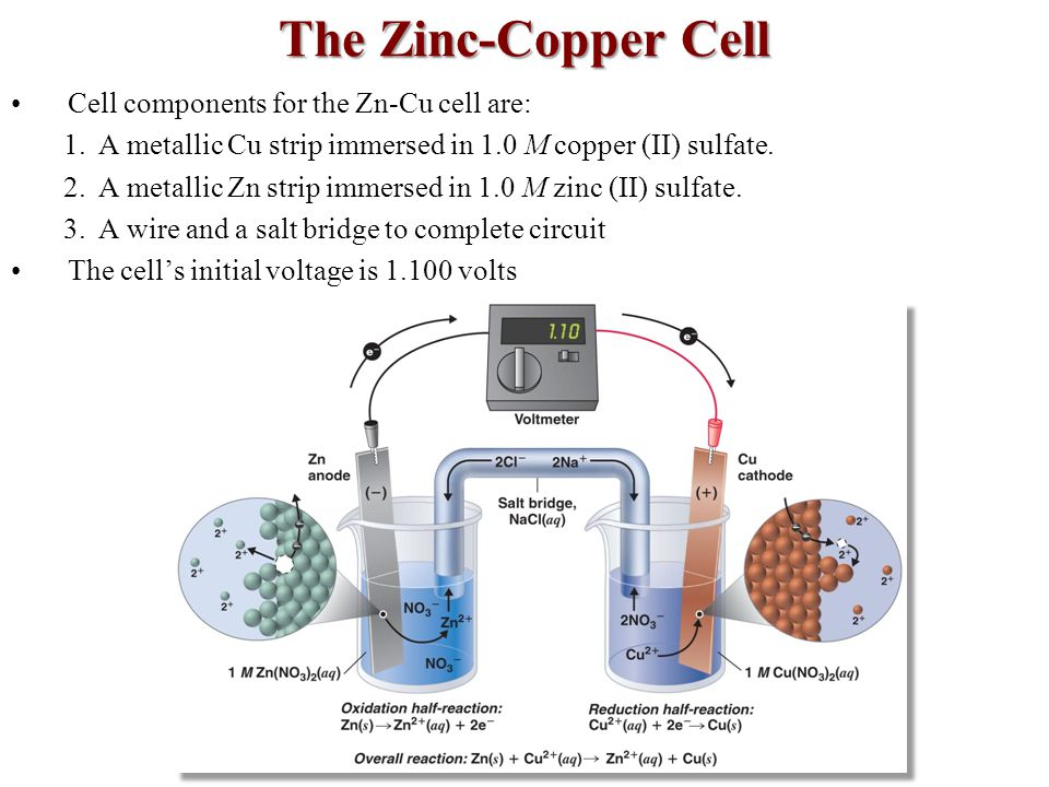 The Zinc-Copper Cell Cell components for the Zn-Cu cell are: