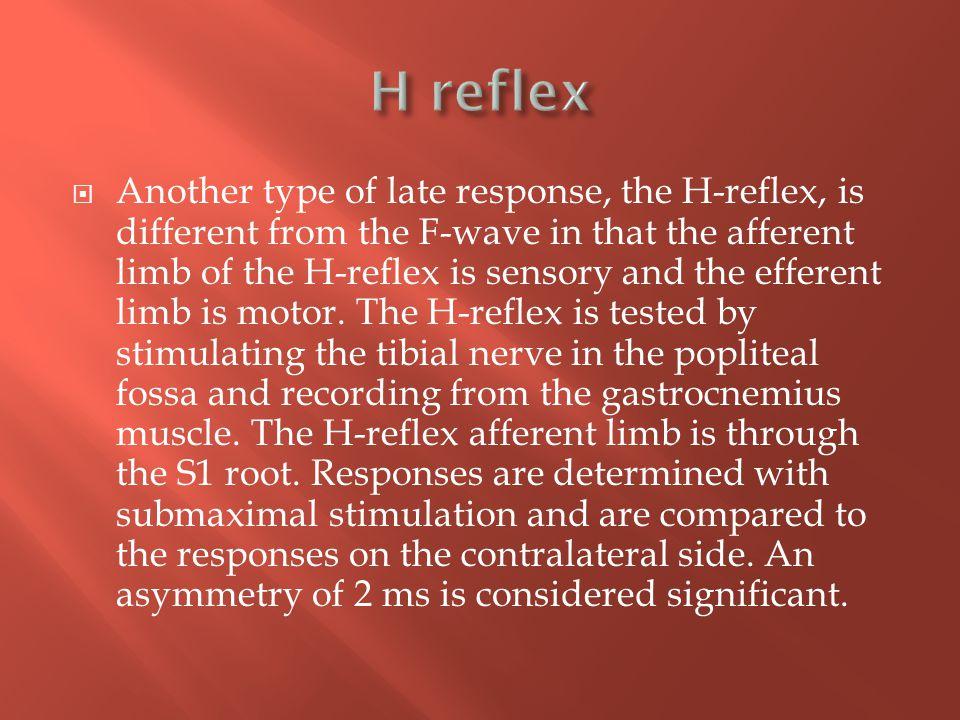 H reflex