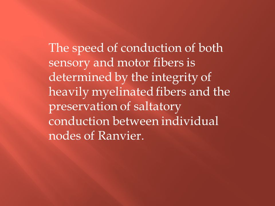 The speed of conduction of both sensory and motor fibers is determined by the integrity of heavily myelinated fibers and the preservation of saltatory conduction between individual nodes of Ranvier.