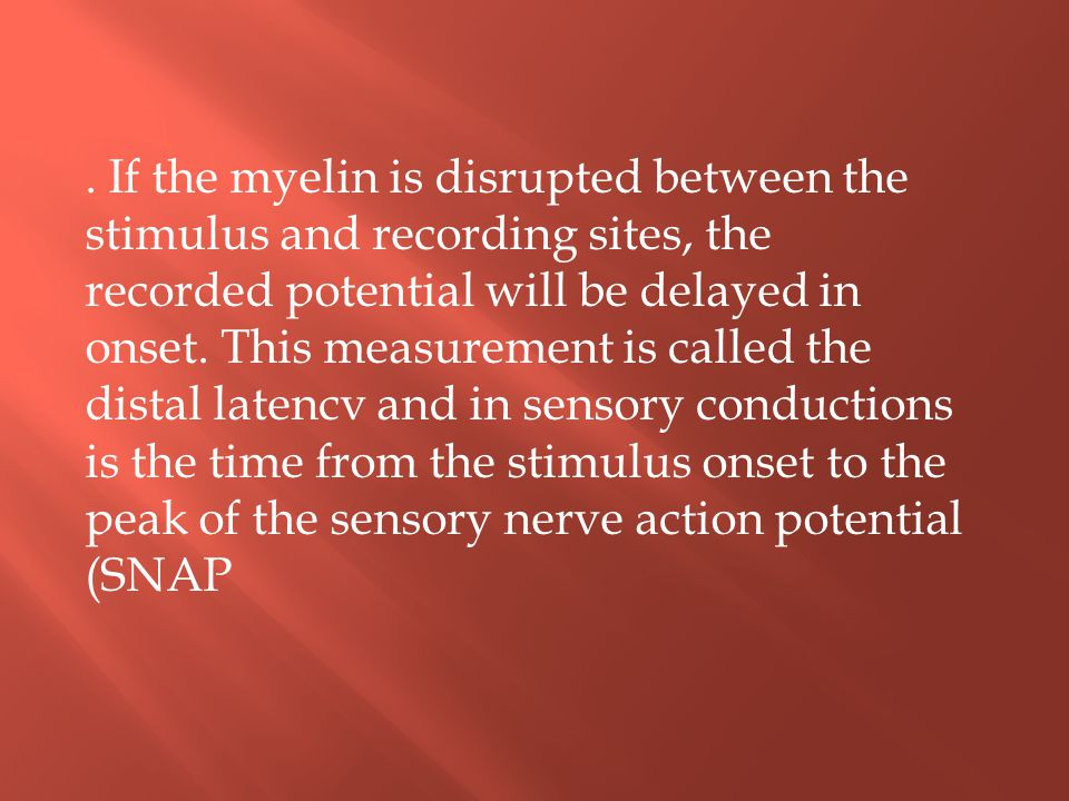 If the myelin is disrupted between the stimulus and recording sites, the recorded potential will be delayed in onset.