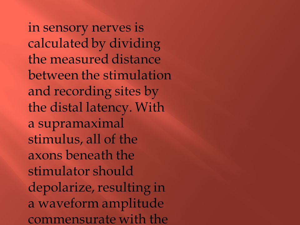 in sensory nerves is calculated by dividing the measured distance between the stimulation and recording sites by the distal latency.