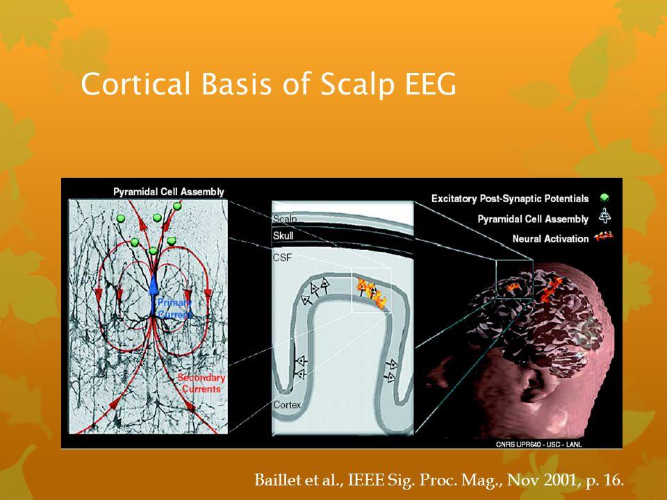 Cortical Basis of Scalp EEG